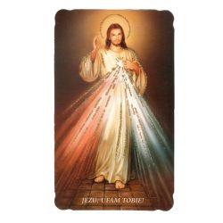 Irgalmas Jézus aranyozott szentkép