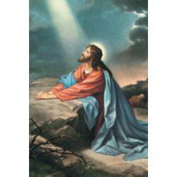 Jézus az Olajfák hegyén szentkép